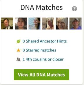 DNA matches